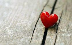 Conosci Lovepedia?